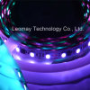RGB 1903 LED Strips SMD5050 mit Ce&RoHS