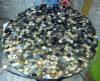 육각형 본 (SP-BL02)에 있는 Blacklip 포탄 모자이크 탁상용