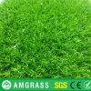 زخرفة عشب اصطناعيّة لأنّ حديقة ([أمف323-40ل])