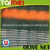 Rede verde-oliva da coleção da borda apertada para Havest verde-oliva