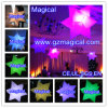 Opblaasbare Decoratie/Opblaasbare Decoratie voor Partij/Opblaasbare Decoratie met LEIDENE Lichten (mic-094