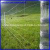 Rete fissa superiore dell'azienda agricola della rete fissa del pascolo della rete fissa del bestiame di resistenza alla ruggine
