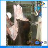 Cer Cattle Halal Slaughterhouse Machines in Abattoir