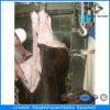 De Machines van het Slachthuis van Halal van het Vee van Ce in Slachthuis