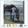 PVC покрыл загородку ячеистой сети/сваренные панели проволочной изгороди (изготовление)