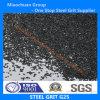 Qualität Steel Grit G25 mit ISO9001 u. SAE