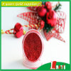 Ultra rosso Fine Glitter Powder per Artificial Flowers (CH3203 Red)