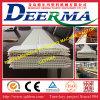 PVC-Deckenverkleidung-Profil-Maschine/Strangpresßling-Zeile