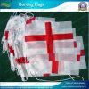 Flag de encargo Bunting, Paper, Polyester, PVC, el PE etc (NF11P02007)