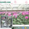 花の温室のための中国の壁に取り付けられた換気の冷却ファン