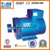 Generador trifásico de la STC Seires de Ltp