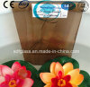Bronze tinto Bamboo Patterned Glass con CE, iso