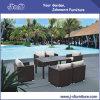 Outdoor Patio Rattan Wicker Dining Set, Garden Furniture (J298)