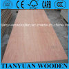 4 ' x8 1-25m m Red Pencil Cedar Plywood
