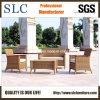 Sofà stabilito Sc-B1002 di /Garden di stile del sofà americano moderno del rattan)