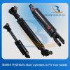 Cylindre hydraulique utilisé par joint élevé temporaire bi-directionnel de vente de double