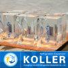 Прозрачная машина льда блока для рыб в Индонесии