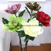 Factory Wholesale Real Coloris Fleurs Artificielles Magnolia Fleurs