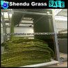 3/8inchゲージを持つ25mmの庭の総合的な草