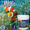 바닷물 열대 물고기 바다 Hzy016