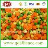 Eingefrorenes IQF mischte Gemüse mit Erbsen, Mais-Karotte, Schnitt-Bohnen