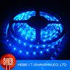 Azul 3528 SMD LED tira flexible