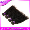 do Afro brasileiro não processado Kinky brasileiro do cabelo humano de cabelo Curly do cabelo do Virgin da classe 7A pacotes Curly Kinky do cabelo 3 do Virgin/lote