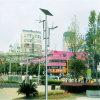 diodo emissor de luz Solar Street Light de 30W 40W