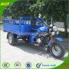 고품질 Chongqing Pedicab