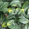 장식적인 인공적인 플랜트 정원 인공적인 잎 담