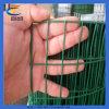 Крен ячеистой сети высокого качества сваренный PVC