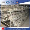 Uso dell'azienda avicola del blocco per grafici della gabbia di uccelli del pollo da carne