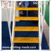 FRP/modellato GRP/Fiberglass/Grating per Stair Tread