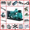 Echte Ersatzteil-Zerhacker-Dieselmaschine China-Cummins für K19