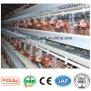 Китай тип клетки цыпленка курочки бройлера реактор-размножитела слоя