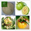 제조 Supply Weight Loss와 Burn Fat Faster Garcinia Cambogia Extract Powder