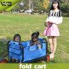 Caminhão de mão portátil ao ar livre que dobra o carro de serviço público com rodas