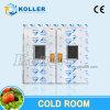 Kühlraum-Hersteller mit PU-Zwischenlage-Panel und kondensierendem Gerät Deutschland-Bitzer