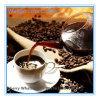 Buena calidad de la mejor parte que adelgaza el café verde