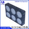 X-Élever la DEL élèvent le large spectre léger de lumière de centrale pour des plantes que la culture hydroponique élève des lumières des centrales 126PCS/LED3w 5292lm