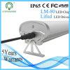 5 anni della garanzia 30W 60cm di tubo impermeabile del Scatto-Tetto LED
