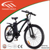 アルミニウムAlloy 500W Motor 48V Mountain E Bike