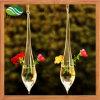 WeihnachtsdekorTeardrophängender Glasterrarium-Vase