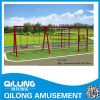 2014 de OpenluchtSchommeling van uitstekende kwaliteit van Kinderen (QL14-233B)