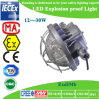 30W LED Explosive Proof Light con Atex Approval