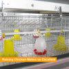 Las aves de corral contienen la jaula de batería del pollo del edificio agrícola de pollo de la estructura de acero