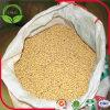 Preiswerte Preis-Nahrung getrocknete Soyabohne