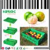 Plantaardige Krat van het Krat van het Fruit van het Krat van de oogst het Plastic