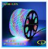 ETL Listed SMD5050 RGB LED Strip pour Christams Décoration