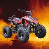 bici de 110CC ATV (125CC) /Quad con el neumático de 8 pulgadas